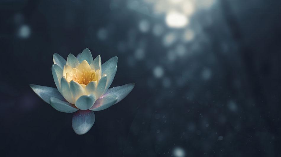 Meditation Uebungen Berufsalltag