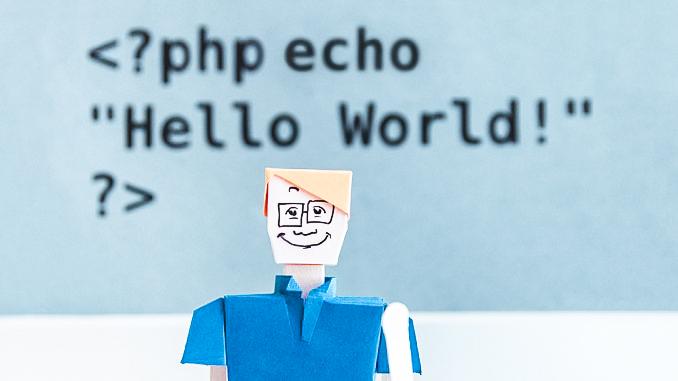Programmierer figur vor screen mit code